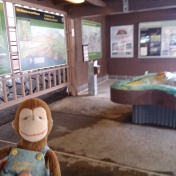 George at the Visitors Center at Volcano National Park