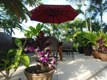George was impressed with the beautiful shared patio at our Villa, The Kona Hula Girl