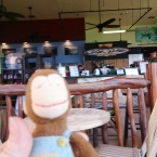 George at Lava Java Bistro