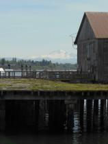 Old pier - Semiahmoo