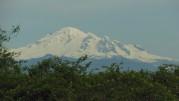 Mt Baker by roadside